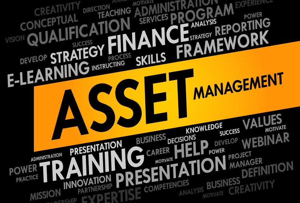 Asset Management Software in Product Lifecycle Management